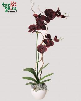 Dirbtinių orchidėjų kompozicija BORDO