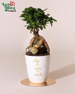 Stilizuotas augalas - padėka tėvams