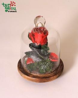 "Kompozicija ""Rožė šerkšne"""