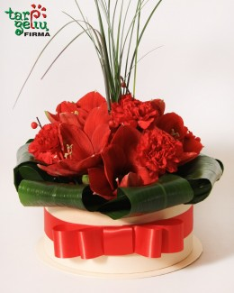 Gėlių dėžutė KARMEN