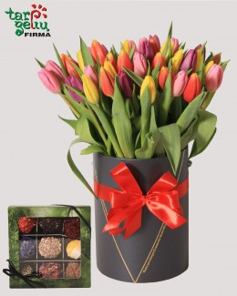 Tulpės dėžutėje ir TRIUFELIAI