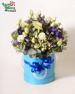 Gėlių dėžutė SVEIKAS, MAŽYLI!