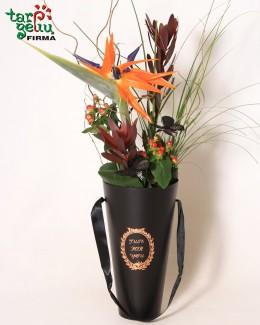 Gėlių dėžutė STRELICIJA