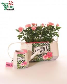 Vazonas + laistytuvas + gėlės