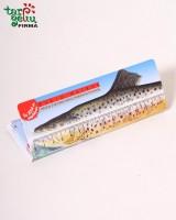 Žvejo metras