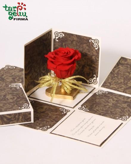 Meilės rožė