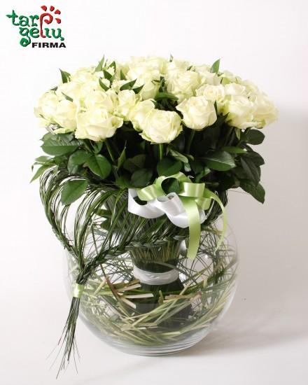 Rožių puokštė BALTA SIMFONIJA