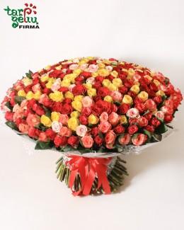 Букет из 333 роз