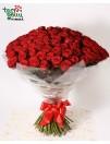 Букет из 100 красных роз