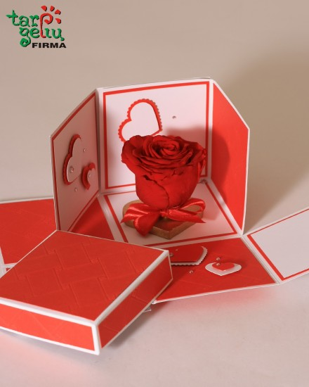 Love letter with preserved rose