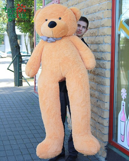 Very big Teddy Bear
