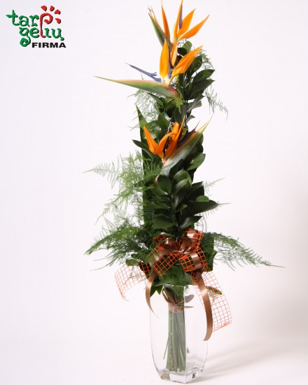 Bouquet BIRD OF PARADISE