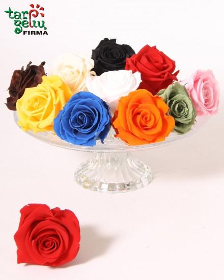 Natural Preserved ROSE blossom