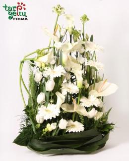 Funeral arrangement TO LIVE...