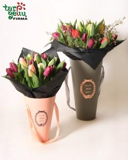 """Beautiful Tulips"""