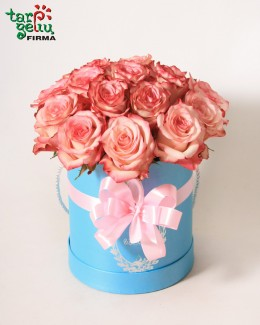 Roses in a box PINK SKY