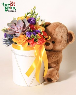 Flower box & Teddy Bear