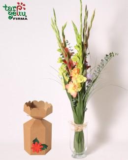 Gladiolus bouquet + GIFT