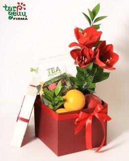 Fruit & Truffles Box