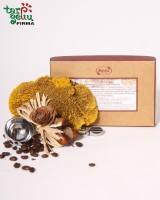 Elegant scoop of coffee