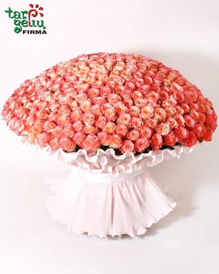 400 rožių puokštė