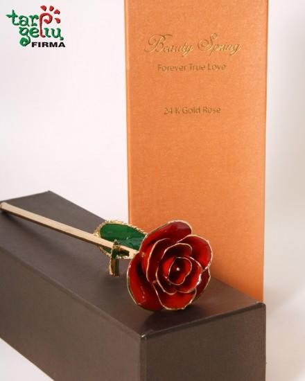Auksu dengta raudona rožė
