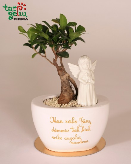 Stilizuotas augalas krikšto tėvams