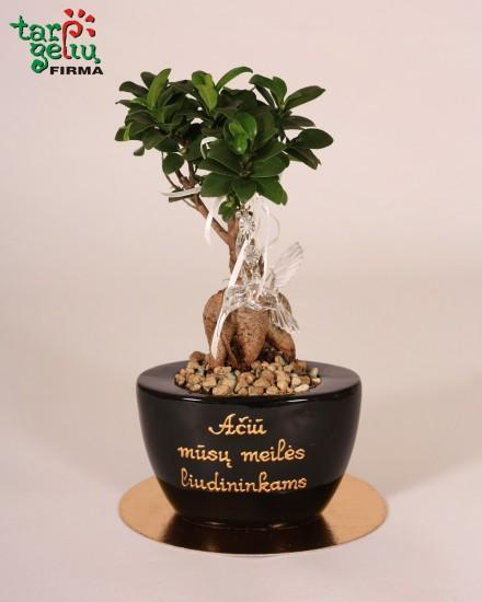 Padėka liudininkams - stilizuotas augalas