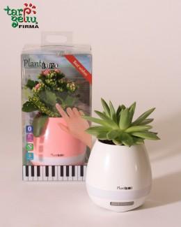 Muzikinis vazonas-garsiakalbis