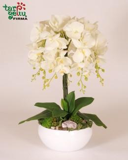 Dirbtinių orchidėjų kompozicija