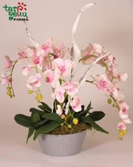 Žavi dirbtinių orchidėjų kompozicija
