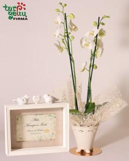 """""""Orchidėja su padėka tėvams"""""""