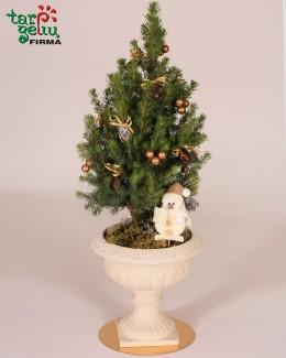 Kalėdų medis