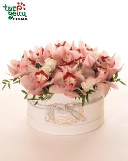 """""""Orchidėjų žiedai"""""""