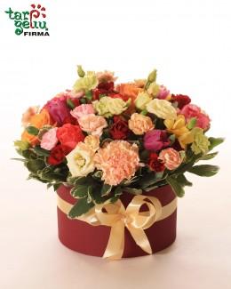 """Gėlių dėžutė """"Bordo"""""""