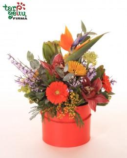 """Gėlių dėžutė """"Egzotika"""""""