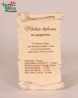 Medinis diplomas su pagyrimu