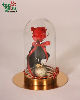 """""""Rožė mylimai Mamytei"""""""