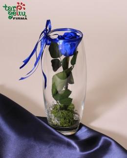 "Kompozicija ""Mėlyna rožė"""