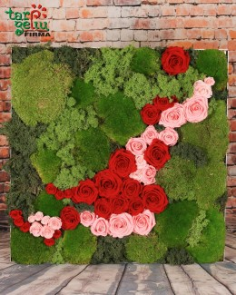 Stabilizuotų rožių ir samanų paveikslas