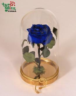 """Mėlyna rožė"""