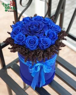 Miegančios mėlynos rožės dėžutėje