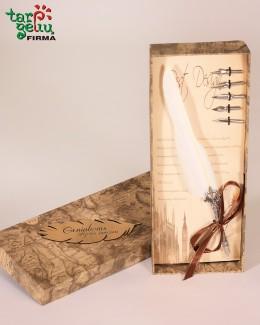 Kaligrafijos plunksna