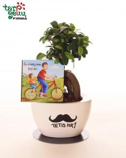 """Stilizuotas augalas """"Tėtis Nr1"""""""