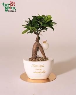 Stilizuotas bonsas - padėka tėvams