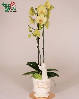 Stilizuotas orchidėja - atminimas krikšto tėvams
