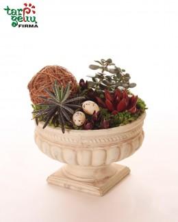 Velykinė augalų kompozicija