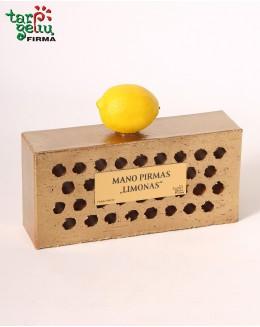 """Mano pirmasis """"Limonas"""""""