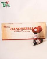 Maisto papildas GANODERMA EXTRACT