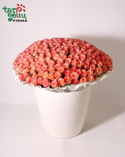 Bouquet 300 ROSES